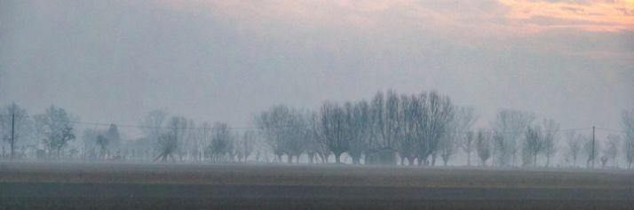 Paesaggi invernali nei campi della bassa parmense