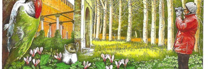 Il bosco negri di Pavia nell'iIllustrazione si Franco Spuri Zampetti