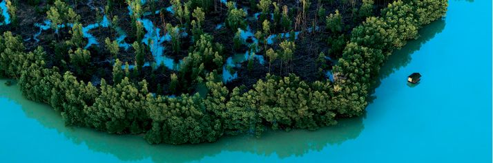 Le mangrovie lambiscono le coste della penisola malese